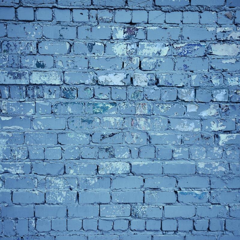 голубая стена текстуры кирпича стоковые изображения