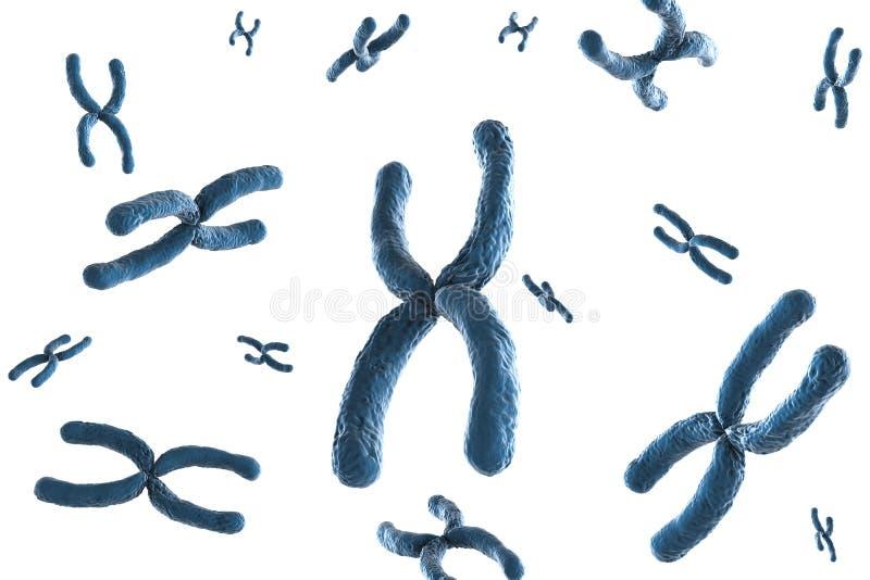 Голубая хромосома стоковое изображение