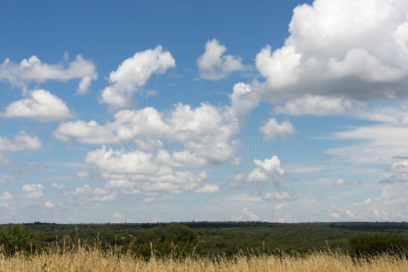 Голубое небо и белые облака в Африке стоковые фотографии rf