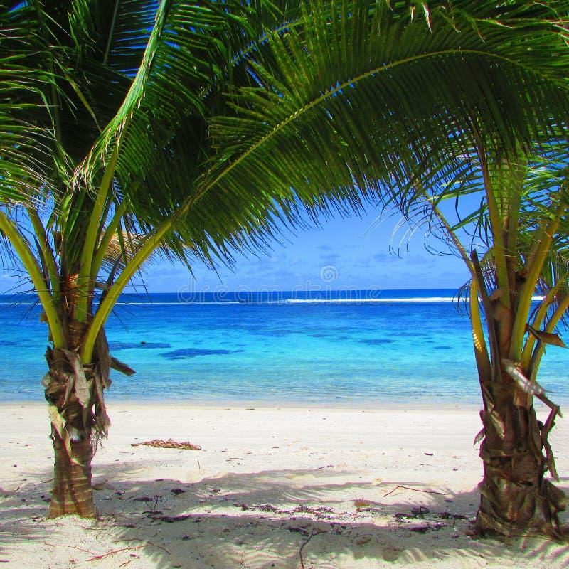 Голубое небо и пляж в тропическом острове Самоа стоковая фотография