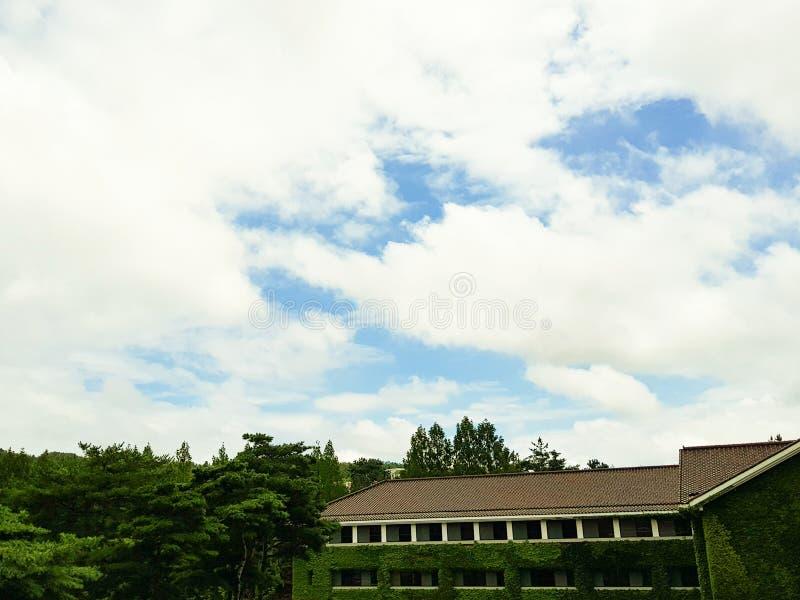 Голубое небо на верхней части стоковые фотографии rf