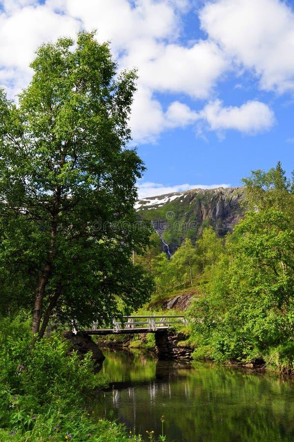 голубое небо норвежца природы гор fiords стоковые изображения