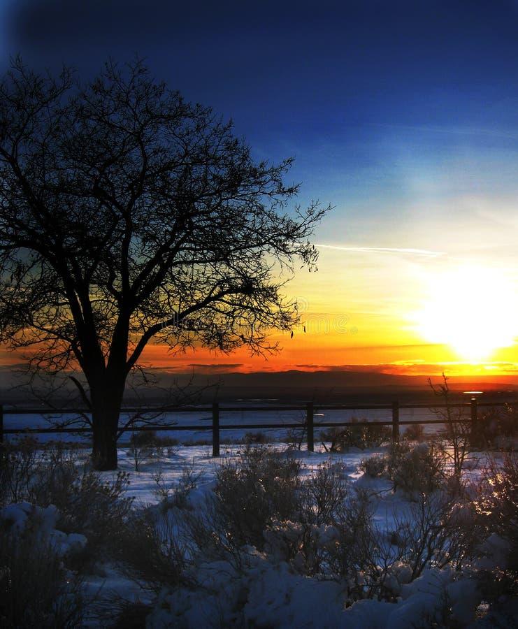 голубое померанцовое небо стоковая фотография