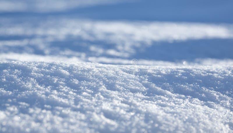 Голубое поле снега стоковые фото