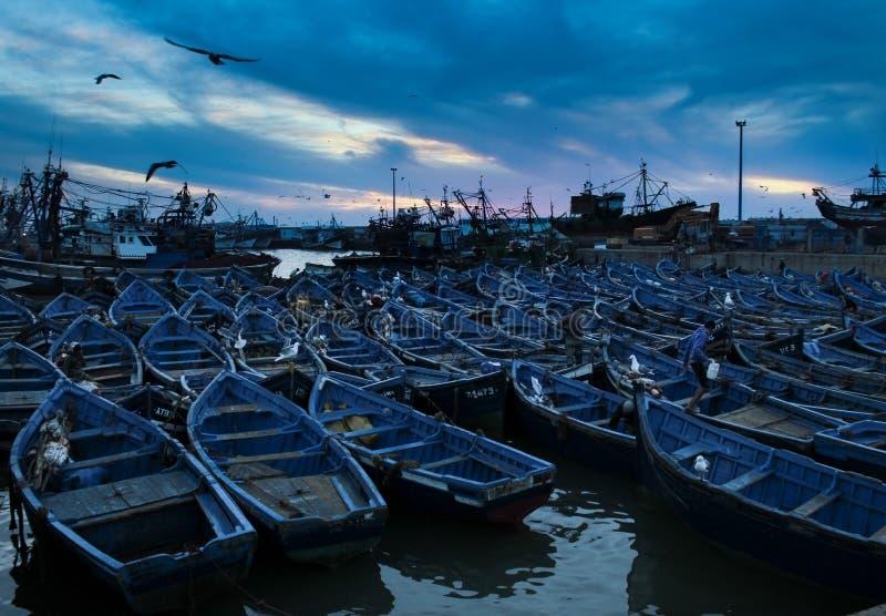 голубое essaouira Марокко шлюпок стоковая фотография