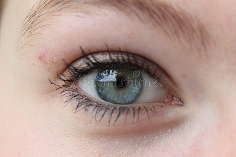 Голубой большой глаз стоковая фотография