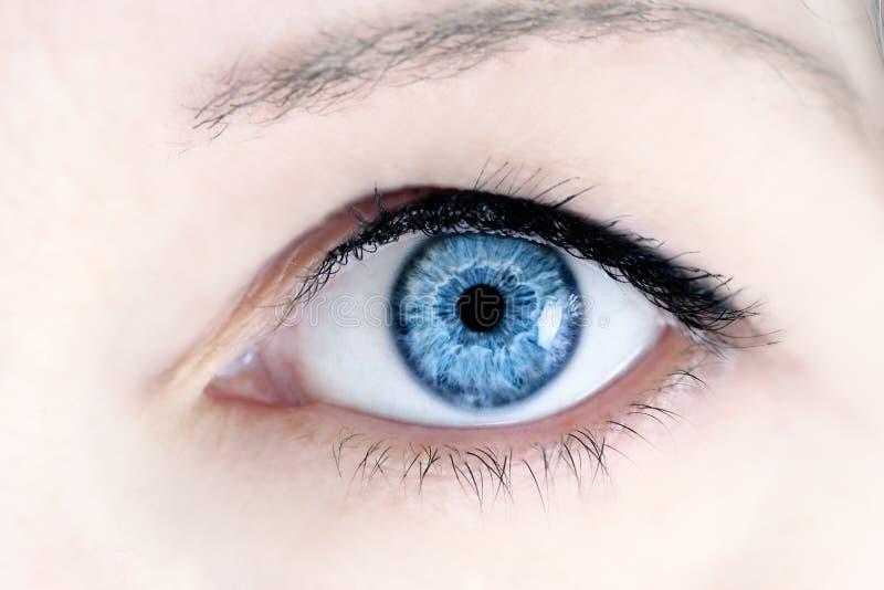 голубой глаз стоковая фотография