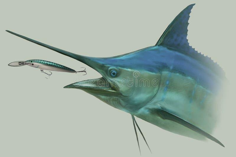 Голубой Марлин гоня портрет рыбной ловли прикормом иллюстрация вектора