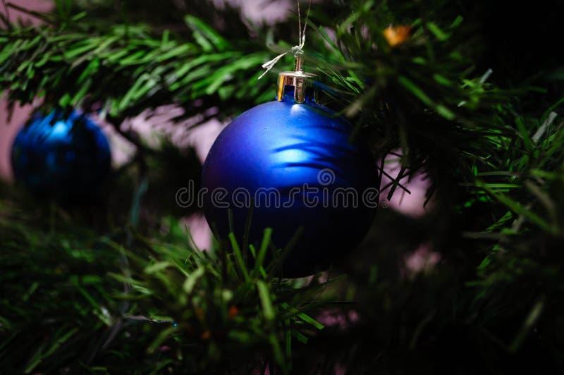 Голубой орнамент на рождественской елке стоковое фото rf