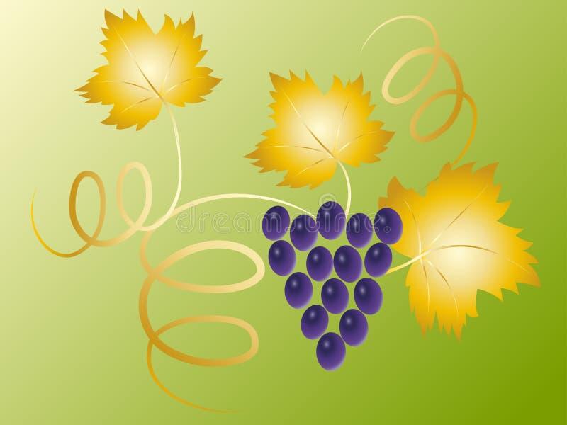 голубые виноградины ветви иллюстрация вектора