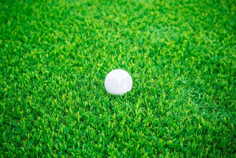 гольф шарика ударяя движение утюга стоковые фото