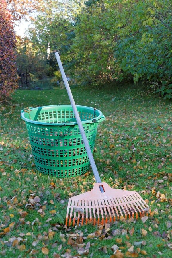 Грабл, листья и зеленая корзина стоковые фотографии rf