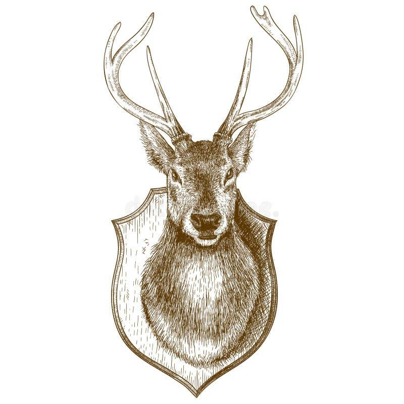 Гравировать заполненную голову северного оленя на белой предпосылке иллюстрация штока