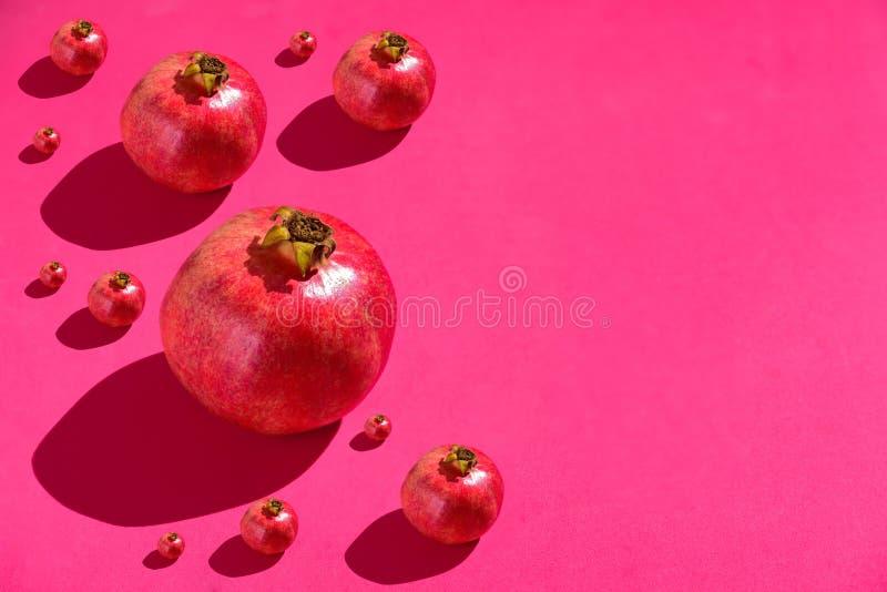Гранатовые деревья на красной предпосылке стоковые фотографии rf