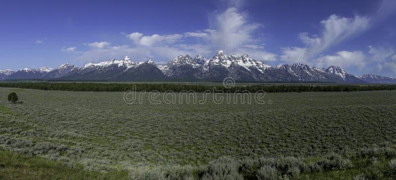 Грандиозная панорама горной цепи Teton стоковое изображение rf