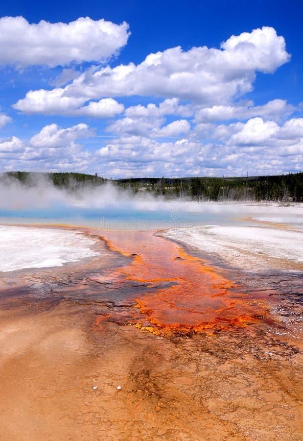 грандиозная призменная весна yellowstone стоковые изображения rf