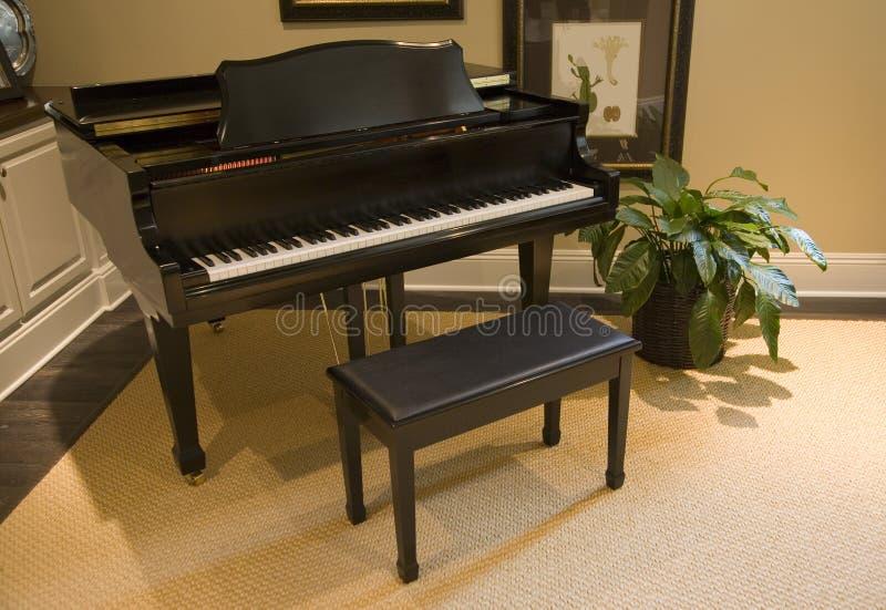 грандиозный рояль стоковое фото