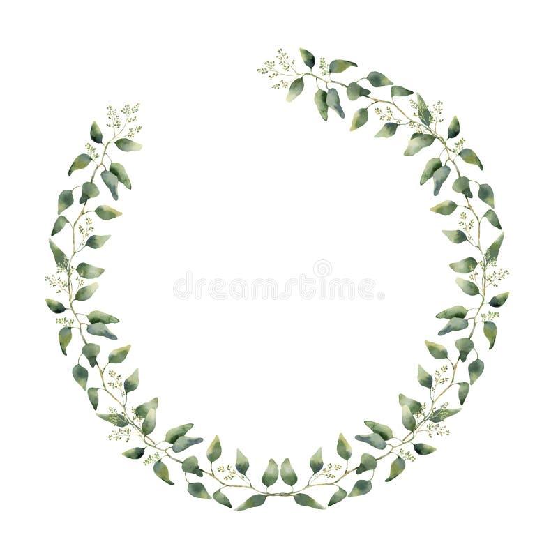 Граница акварели флористическая с листьями и цветками евкалипта Венок покрашенный рукой флористический с ветвями, листьями isolat иллюстрация вектора