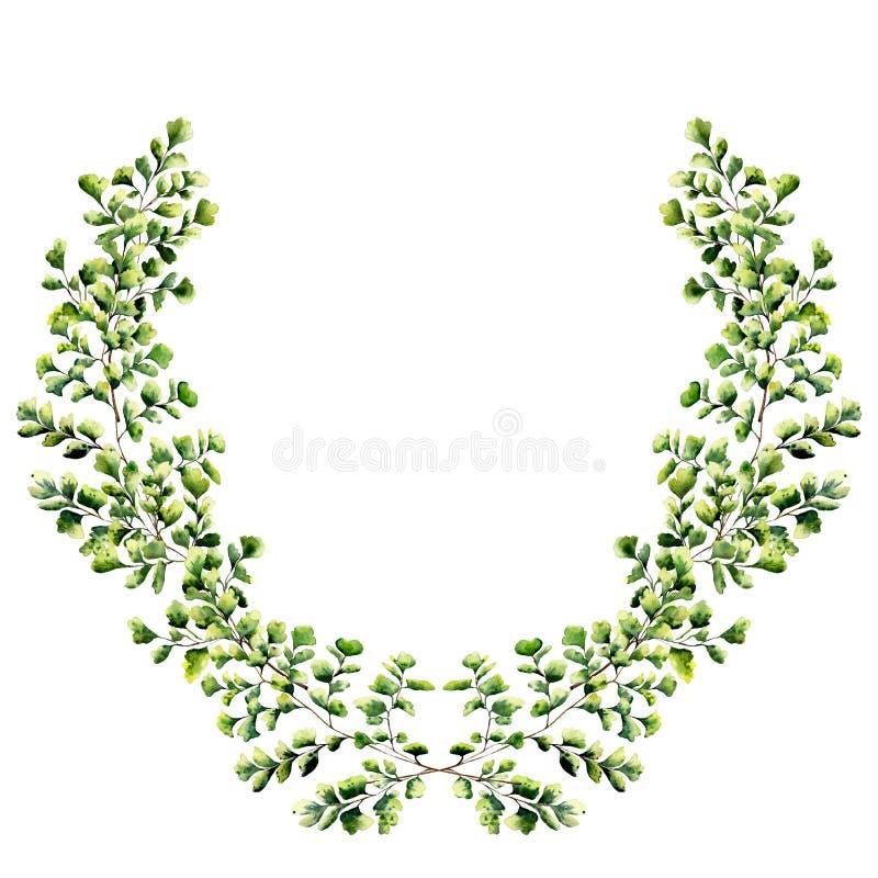 Граница акварели флористическая с листьями папоротника maidenhair Венок покрашенный рукой флористический с ветвями, изолированным иллюстрация штока