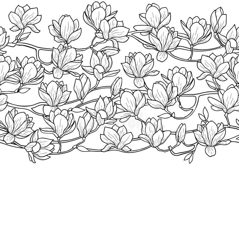 Граница весны магнолии безшовная бесплатная иллюстрация