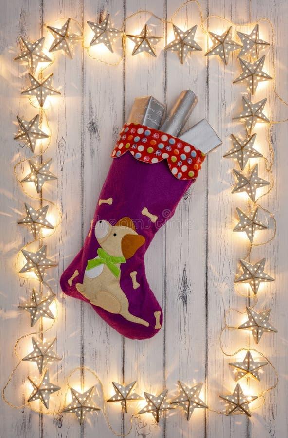 Граница золотых светов рождества звезды, с christm щенят стоковое фото