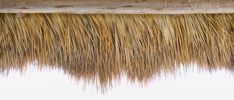 Граница прокладки соломы Tiki стоковое изображение rf