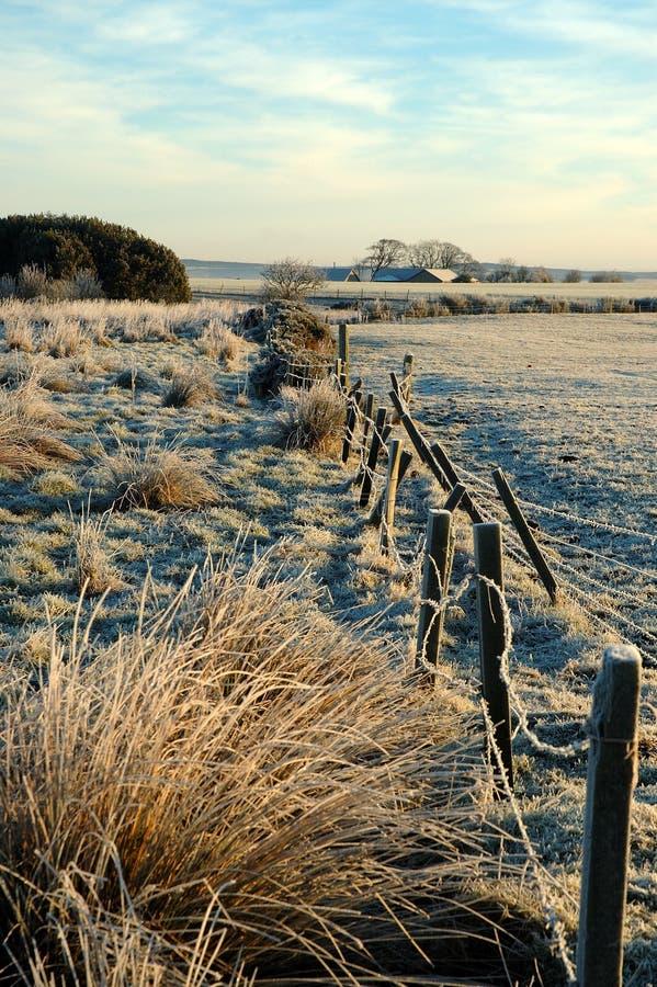 Download граница старая стоковое фото. изображение насчитывающей заморозок - 650724