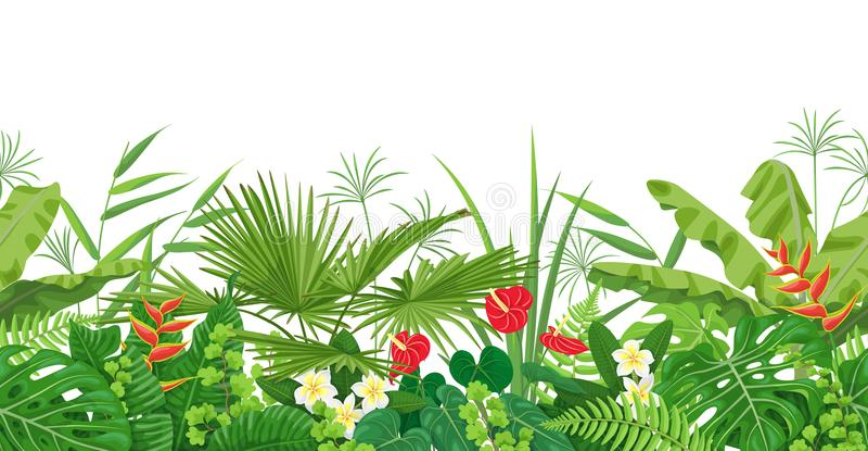 Граница тропических заводов безшовная иллюстрация штока