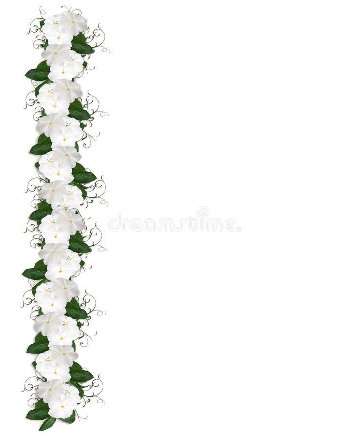 граница цветет белизна иллюстрация вектора