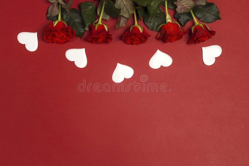 Граница цветков красной розы и белых сердец на красной предпосылке Место для текста, покрывает вниз с состава стоковые изображения