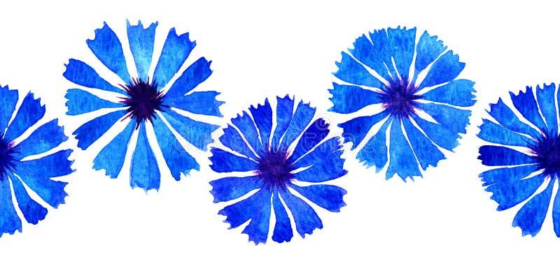 Граница cornflower акварели иллюстрация вектора