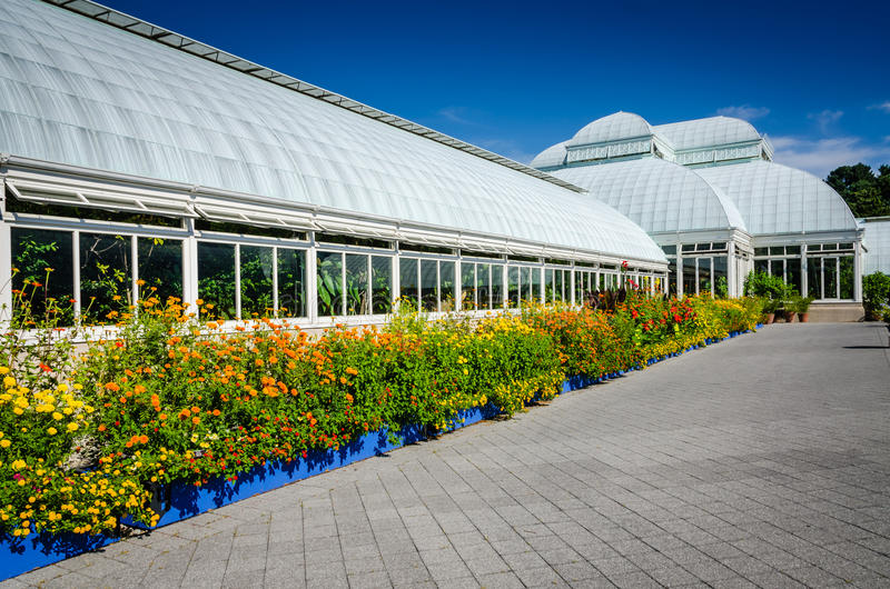 Граница Lantana - консерватория Haupt - сад Нью-Йорка ботанический стоковые изображения