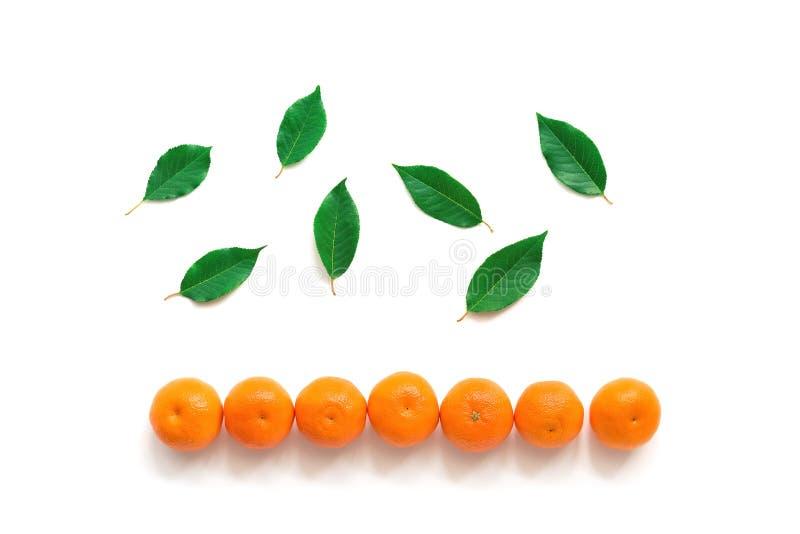 Граница Tangerines и зеленые листья на белой изолированной предпосылке, E стоковые фотографии rf