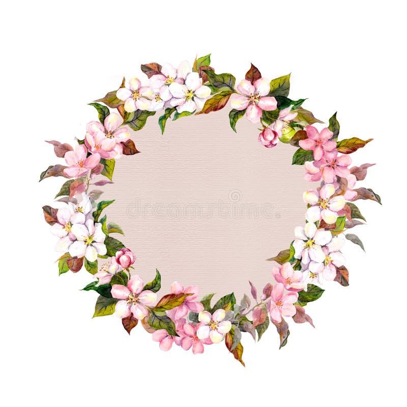 Граничьте венок с цветками вишней Сакуры, цветением цветка яблока Карточка акварели иллюстрация вектора