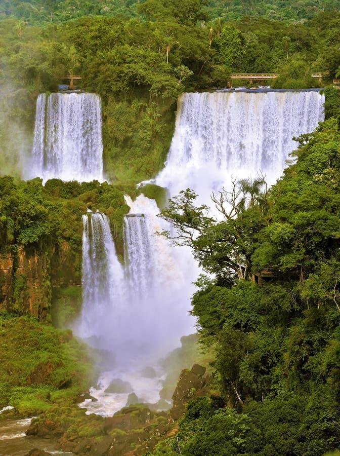 Грандиозное Игуазу Фаллс на бразильской стороне стоковое изображение rf