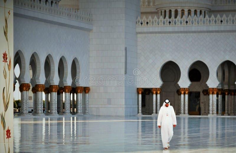 Грандиозные воды мечети стоковое фото rf