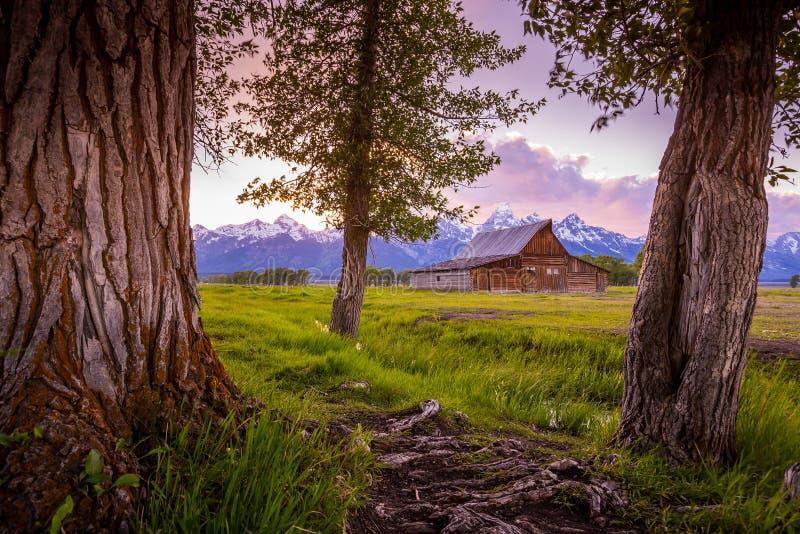Грандиозные горы Teton, Вайоминг стоковые фото