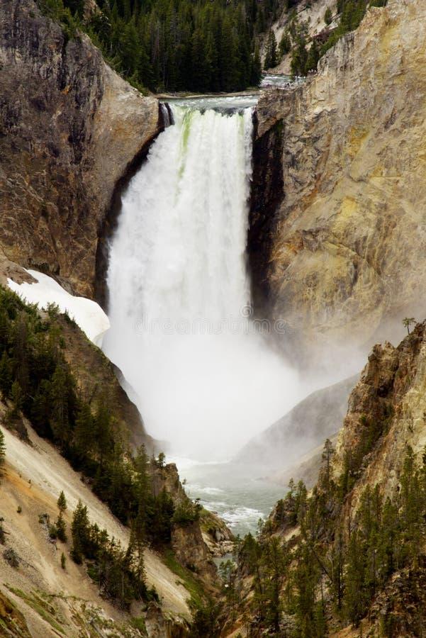 Гранд-каньон водопадов Йеллоустона. стоковые фото