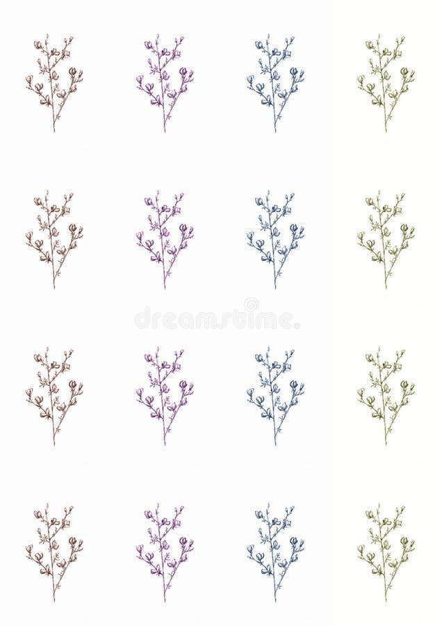 Графическая линия картина цветков на белой предпосылке, красивая иллюстрация искусства monochrome еда плода вегетарианская иллюстрация вектора
