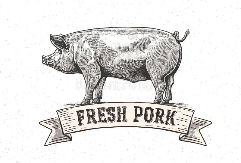 Графическая свинья иллюстрация вектора