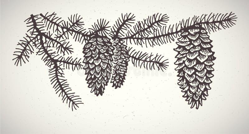 Графические елевые ветви иллюстрация вектора