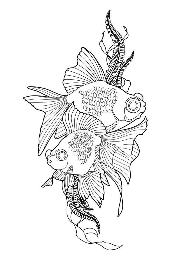 Золотая рыбка – Телескоп   900x636
