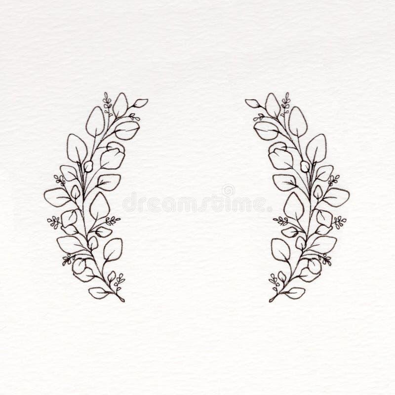 Графический венок с листьями евкалипта стоковые изображения