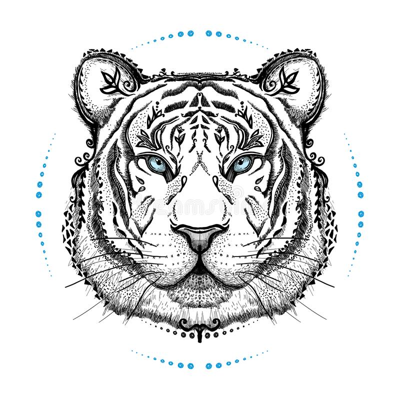Графический плакат с тигром, портретом вида спереди, иллюстрацией вектора руки вычерченной бесплатная иллюстрация