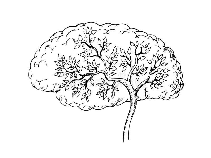Графический эскиз человеческого мозга с деревом внутрь бесплатная иллюстрация