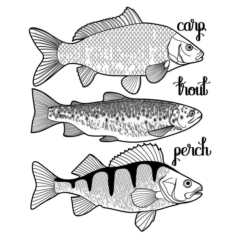 Графическое собрание рыб иллюстрация штока