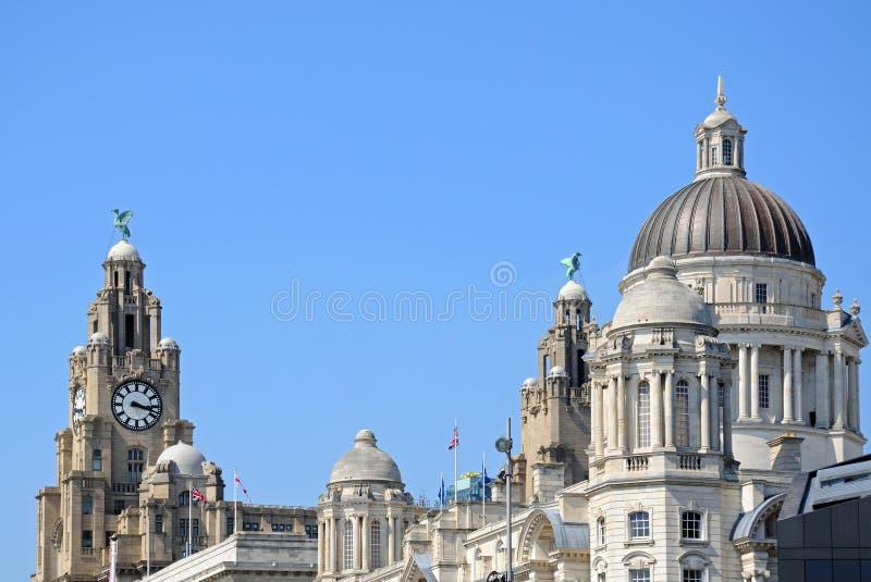 3 грациозности, Ливерпуль стоковые фото