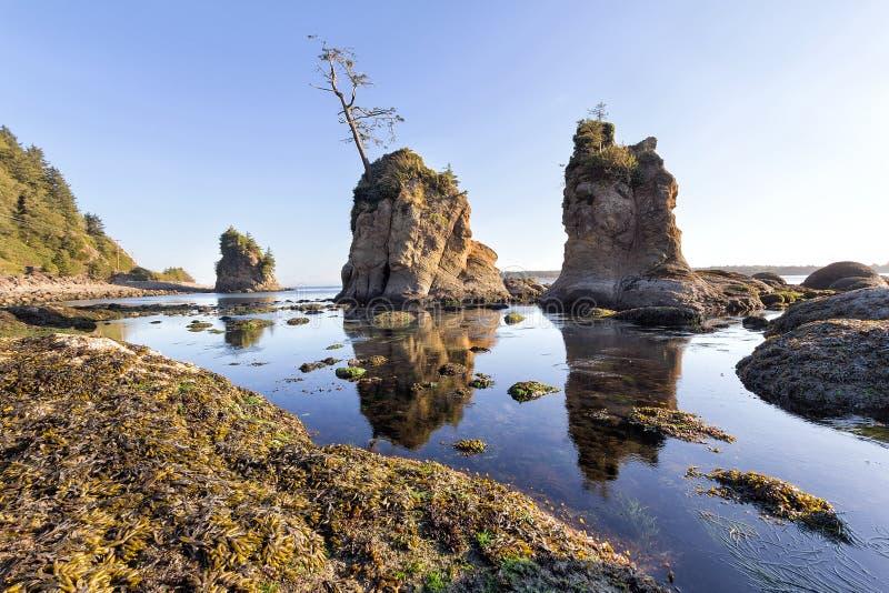 3 грациозности на побережье Garibaldi Орегона стоковые изображения
