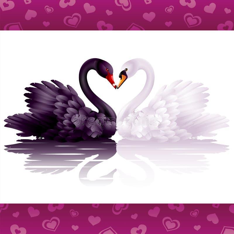 грациозно лебеди 2 влюбленности иллюстрация вектора