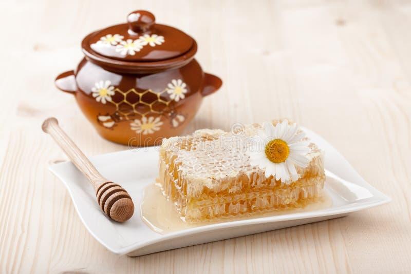 Гребень меда и бак меда стоковые изображения